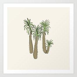 madagascar palm Art Print