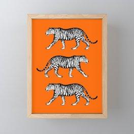 Tigers (Orange and White) Framed Mini Art Print