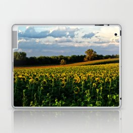 Summer sunflower field Laptop & iPad Skin