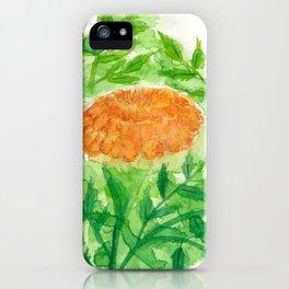 Marigold - Orange 2 iPhone Case