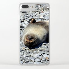 Mother Fur Seal and Pup Clear iPhone Case