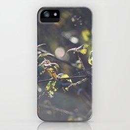 Nettles iPhone Case