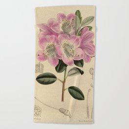 Rhododendron oreotrephes, Ericaceae Beach Towel