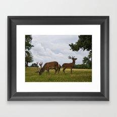 Deers in Richmond Park Framed Art Print