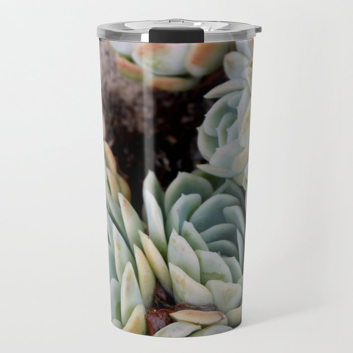 California Potted Succulents Travel Mug
