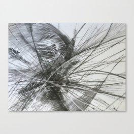 Tumbleweed Canvas Print