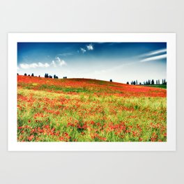 Poppy's field Art Print