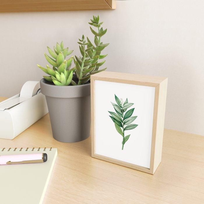 Smilacina Stellata Flower Illustration Framed Mini Art Print