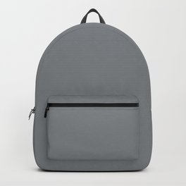 Mid Tone Gray Solid Color Pairs with Sherwin Williams Mantra 2020 Forecast colors Software SW7074 Backpack