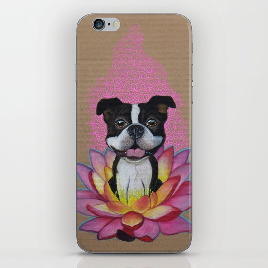 Zen Boston Terrier iPhone & iPod Skin