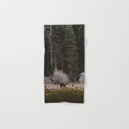 BEAR IN THE FOREST Hand & Bath Towel