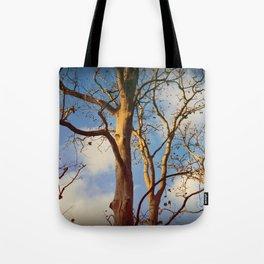 Treptow VI Tote Bag