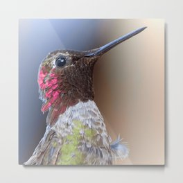 Bird color 5 Metal Print
