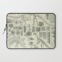 Fossil Chart Laptop Sleeve