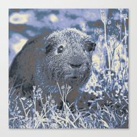 guinea pig Canvas Prints featuring blue guinea pig by MehrFarbeimLeben