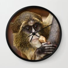 Young Debrazza's Monkey  Wall Clock