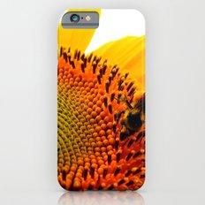 Bee Feasting on Sunflower Slim Case iPhone 6s