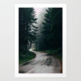 Across the Forest Art Print