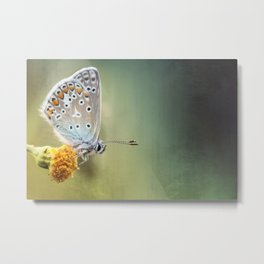 Composition in other colors....  Metal Print