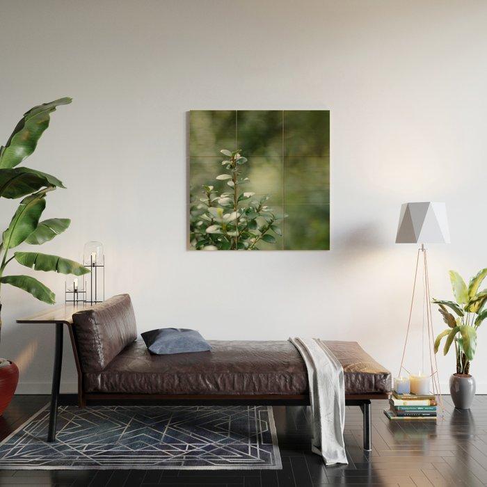 Green light Wood Wall Art