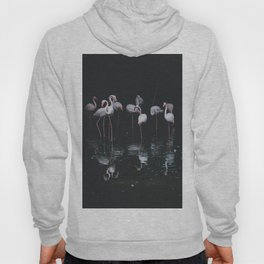 flamingos #society6 #decor #buyart Hoody
