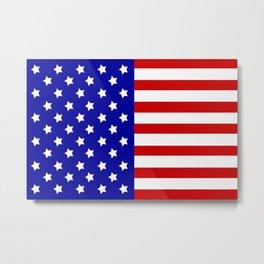 America Metal Print