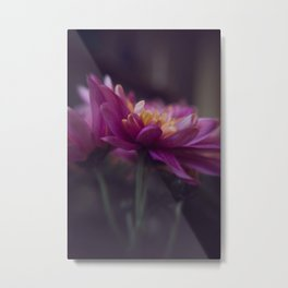 fuchsia dream Metal Print