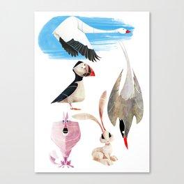 Arctic animals 2 Canvas Print
