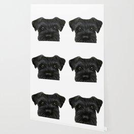 New Black Schnauzer, Dog illustration original painting print Wallpaper