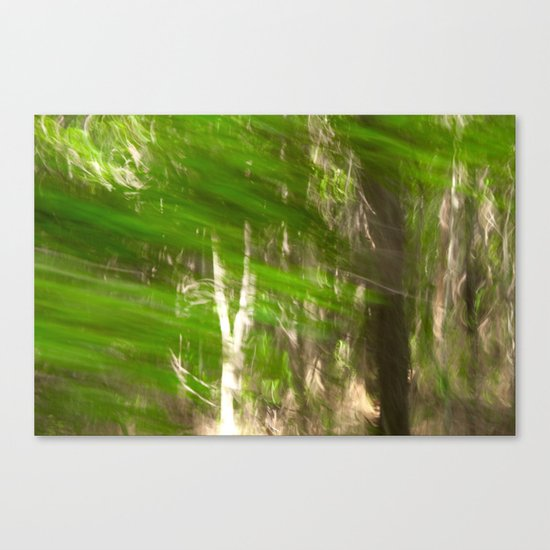 Green Feathers Canvas Print