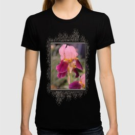 Tall Bearded Iris named Indian Chief T-shirt