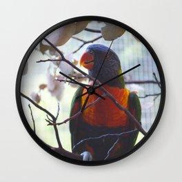 A Feathered Rainbow Wall Clock
