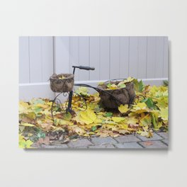 Tricycle in the Fall Metal Print