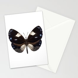 Butterfly species Euploea radamanthus common name Magpie Crow Stationery Cards