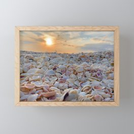 Sunset Shells Framed Mini Art Print