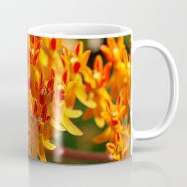 Butterflyweed, Asclepias tuberosa Coffee Mug