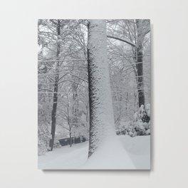 Maplewood - Snow on trees Metal Print