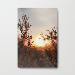 if one only remembers... Metal Print