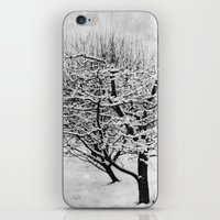 blankets iPhone & iPod Skins featuring Blankets of Snow by Bella Blue Photography