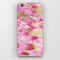 lavender iPhone & iPod Skins featuring Lavender by Anne Staub