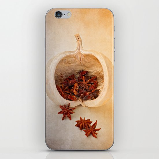 STAR ANISE iPhone & iPod Skin
