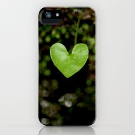 Heartfelt Nature at Hickory Canyons MDC Area (Missouri) iPhone Case