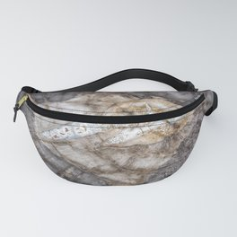Petrified wood 3266 Fanny Pack