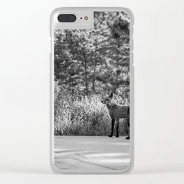 Floofster Clear iPhone Case