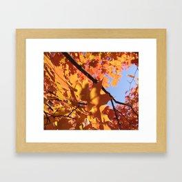 Tyler Leaves Framed Art Print