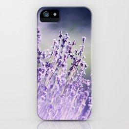 Spring Purple I iPhone Case