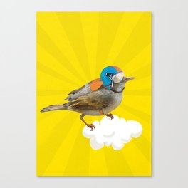 Bird100 Canvas Print
