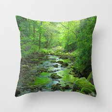 Rocky Forest Creek Throw Pillow