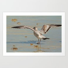 Ready For Takeoff Art Print