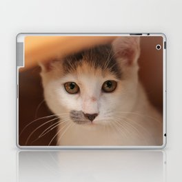 ...and this is Nick... Laptop & iPad Skin